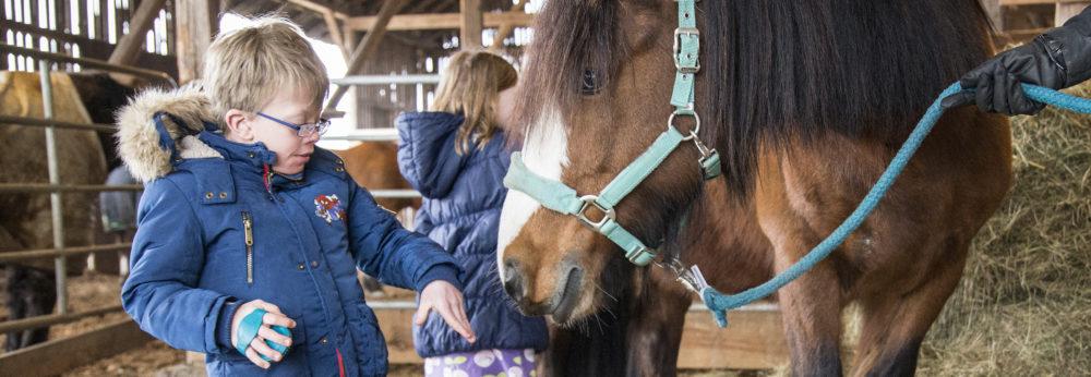 Tiergestützte Therapie und Pädagogik auf Mullewapp